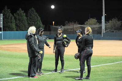 2015 Softball