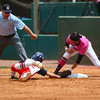 Georgia infielder Alex Hugo (16) tags an Ole Miss player out at first base during an NCAA softball game between Georgia and Ole Miss at Jack Turner Stadium on April 30, 2016 in Athens, Ga.(Photo by Emily Selby)