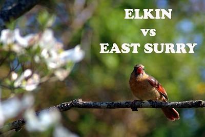 Elkin vs East Surry, 04/18/08