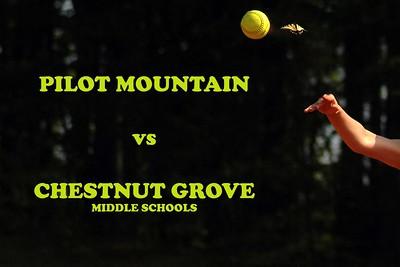 Pilot Mountain vs Chestnut Grove, 05/05/08