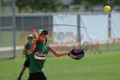 8U Cobras vs Tigers0021