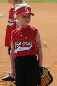6U Vipers vs Cougars 101