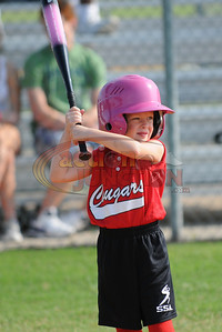 6U Vipers vs Cougars 232