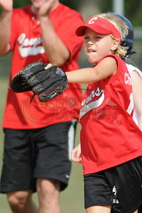 8U Vipers vs Cougars  162