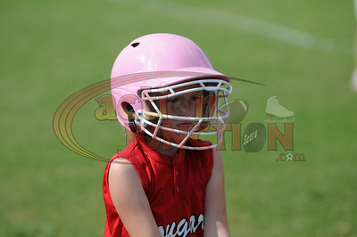 8U Vipers vs Cougars  218