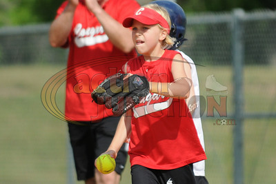 8U Vipers vs Cougars  161