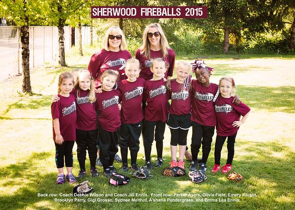 Fireballs 2015