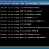 Running key services for remote management of IIS.