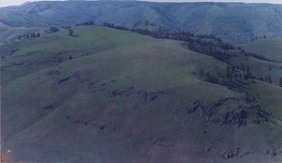 1987 Soil Survey Clearwater Nez Perce
