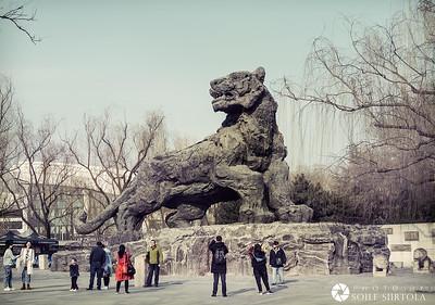 16 Mars - Beijing Zoo
