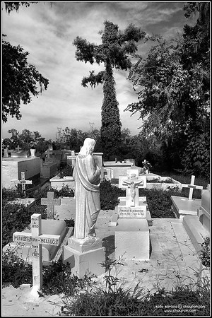 Cemeteries and Holy Places