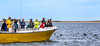 Cape Cod - Sojourn - D2-C1-0320 - 72 ppi