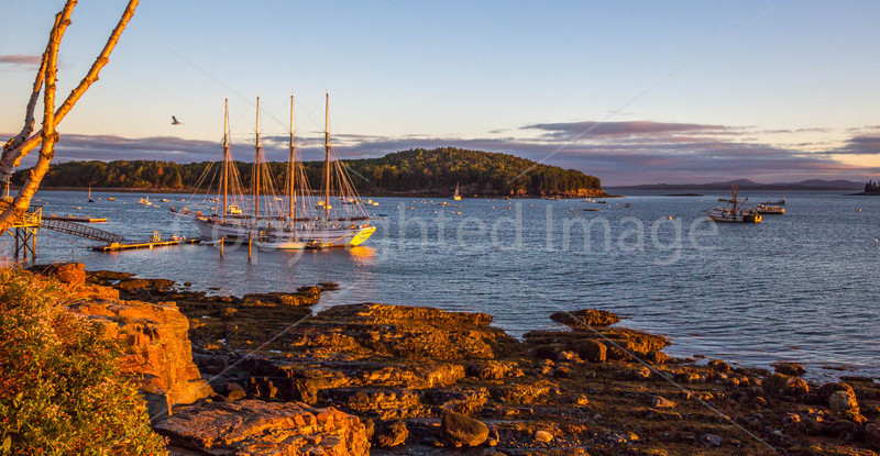 Maine - Acadia - Sojourn - D2-C2-0025 - 72 ppi-2