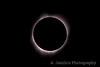 Chromosphere & Inner Corona