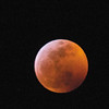 Lunar eclipse Jan 20 2019 from Sonoma County