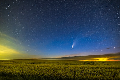 Comet over Canola Field Wide-Angle (July 15, 2020)