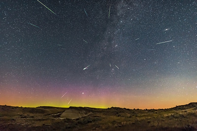 Perseid Meteor Shower at Dinosaur Park (Tracked)