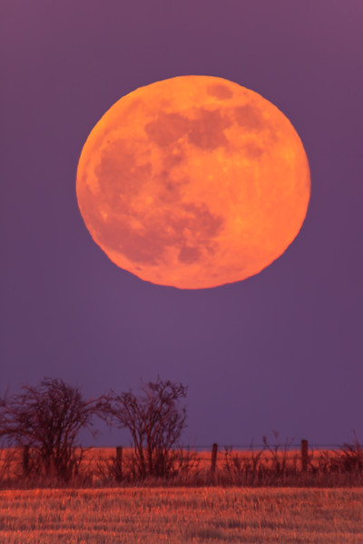 The Rising Pink Supermoon of April 26, 2021