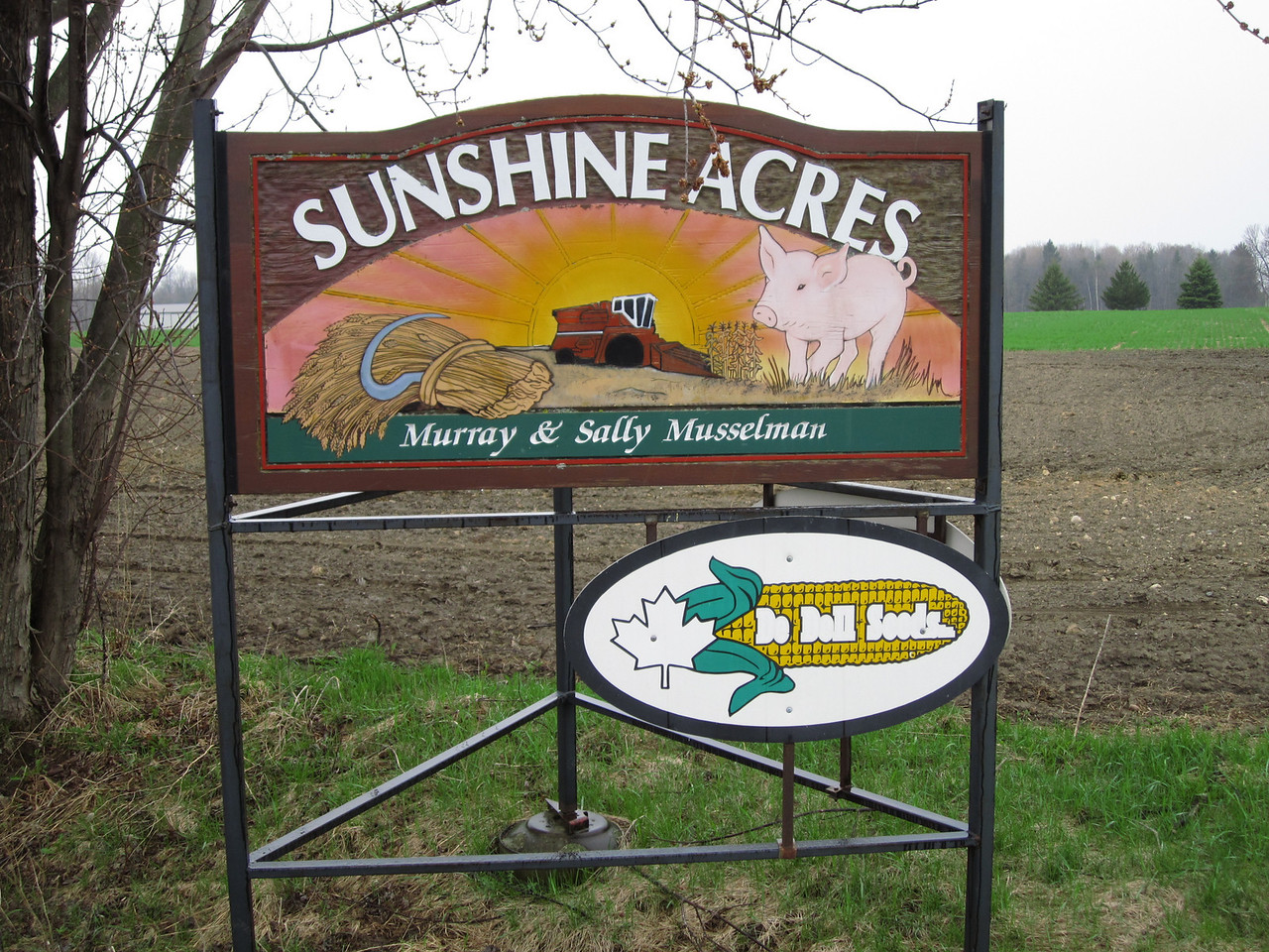 Ironically, the name of one of he farms on which we are located.