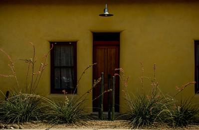Tucson (20 of 68)