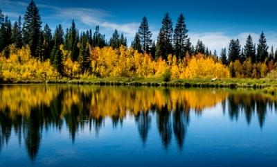 Mesa Lake Fall Web