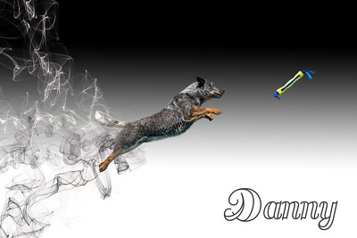 Danny Smoke V2
