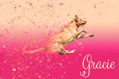 Gracie Bubbles