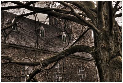 Evangelische Kirche Burg - Solingen 2007 Kyrill und die Folgen: Durch die Wucht des Orkans erfuhr dieser alte Baum eine halbe Drehung und ist jetzt der Dumme, da er die Turmuhr der alten evangelischen Kirche in Solingen-Burg nicht mehr lesen kann und auf die Auskunft von Passanten angewiesen ist.