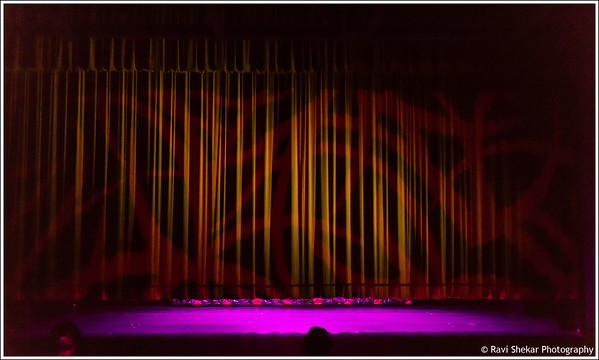 Ravi Shekar - Saturday 2014 Show
