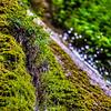 Nojoqui Falls 2560