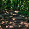 Nojoqui Falls 2494