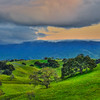 santa ynez green hills 5164