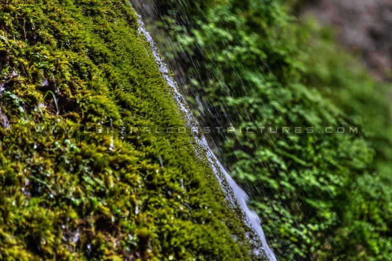 Nojoqui Falls 2580