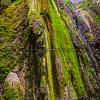 nojoqui falls stairs-5747