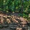 Nojoqui Falls 2624