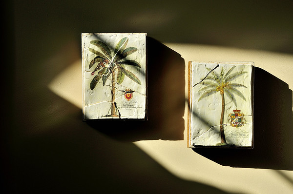 Early morning sunlight, bedroom wall...May, 2012