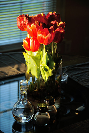 Tulips, late afternoon...May 2012