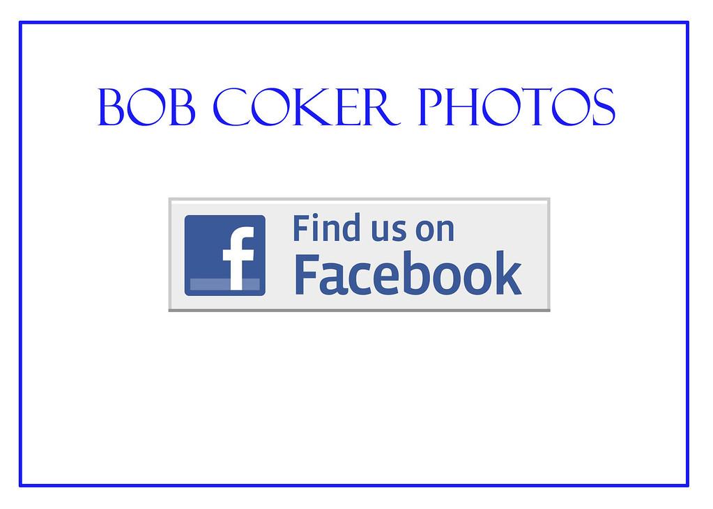 FB Slide