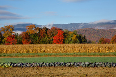 Vermont - Common Road - Waitsfield