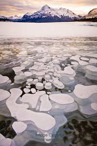Frozen bubbles on Abraham Lake