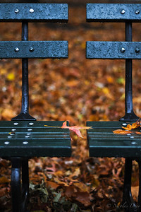 between two benches