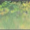 Soft reflections