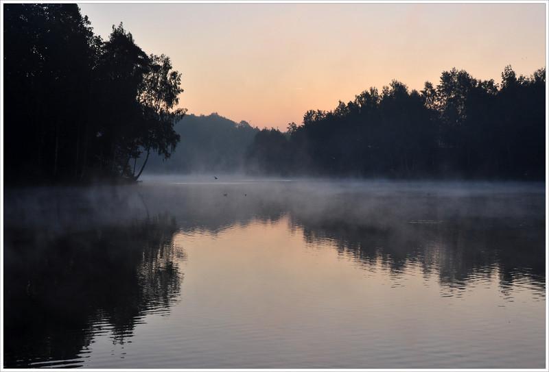 Fall at dawn