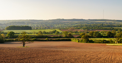 Mendip Hills and Somerset farmland