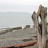 Driftwood Mini Portal