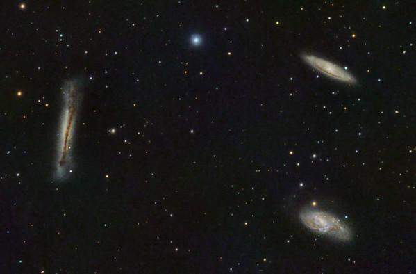 Leo-Triplett: M65, M66 und NGC 3628