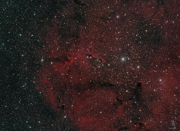 IC 1396A Elefantenrüssel-Nebel