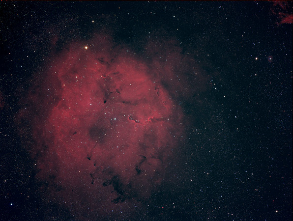 IC 1396 Elefantenrüssel-Nebel