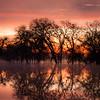 Sunrise on the flooded laguna