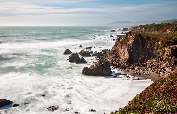 Bodaga Point Seascape